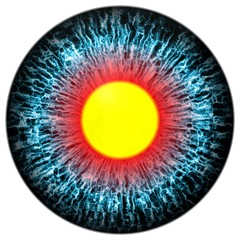Isolated eye with large pupil and yellow retina on white.