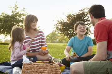 A family, two parents and two children outdoors in the summer having a picnic.