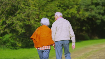 Affectionate senior couple hold hands as they take a walk in the countryside
