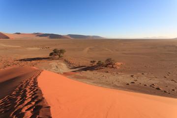 Footsteps on dune