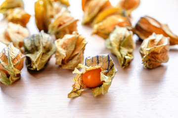 ripe orange physalis