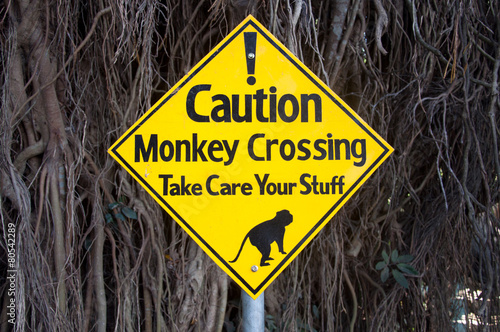 Foto op Plexiglas Indonesië Warning sign - monkeys crossing the road