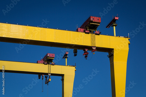 Belfast Cranes - 80543801
