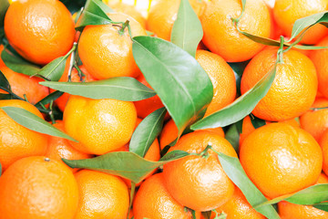 mandarin oranges on market