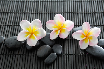 Set of stones with three frangipani on bamboo mat