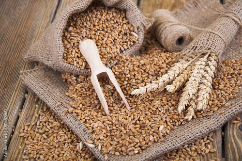 wheat - 80558861
