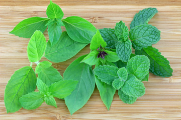Different types of Basil and Mint leaves on a wooden background