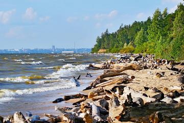 Вид на город Новосибирск с Обского водохранилища