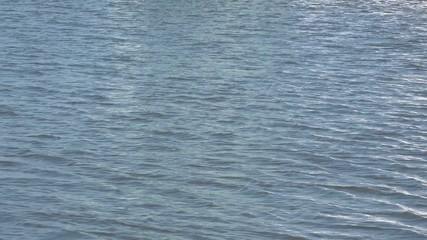 Wasser der Nordsee