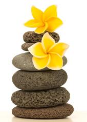 fleurs de plumeria jaune sur pyramide de galets