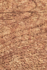 Old Rough Treated Knotted Pine Wood Plank Mottled Grunge Texture
