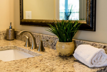 Towel and Plant on Vanity