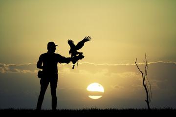 falconer man at sunset