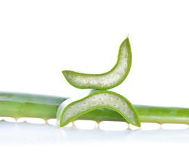 aloe vera fresh leaf isolated