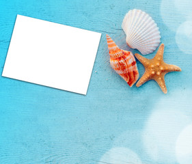 Seashells with blank  on the wooden blue background.