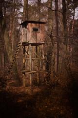 Hochstand im Wald