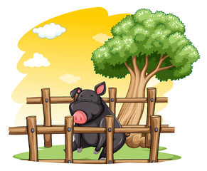 Pig inside the fence