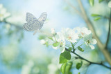 Fototapety Pastel colored photo of butterfly and spring flowers