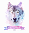 Vector set of watercolor illustrations. Cute wolf - 80580419