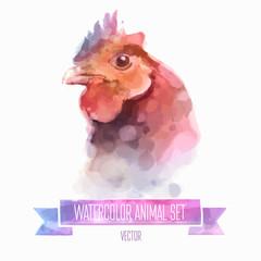 Vector set of watercolor illustrations. Cute chuiken