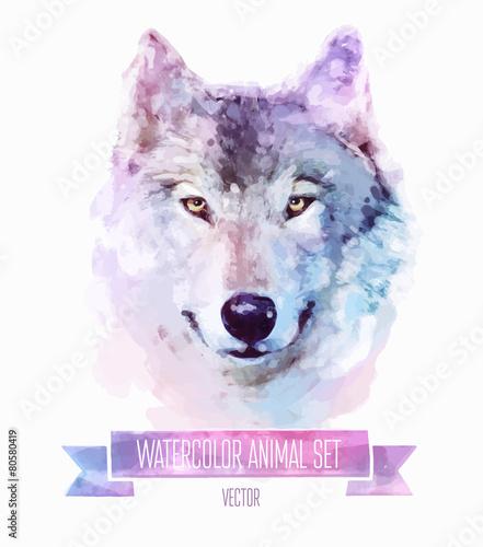Fototapeta Vector set of watercolor illustrations. Cute wolf