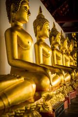 Row of golden Buddha statues