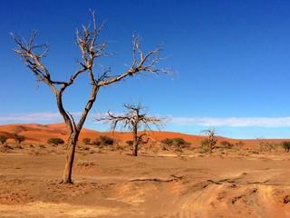 Sossusvlei in Namibia, Africa