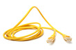 Network ethernet cable with RJ45 connectors - 80590068
