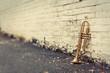 Leinwandbild Motiv Old Trumpet Brick Wall