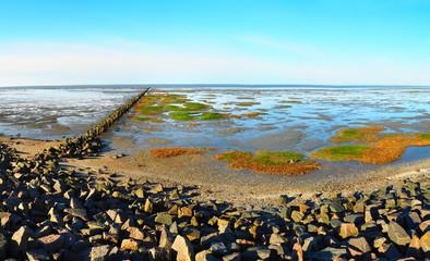 Nordseeküste - Watt
