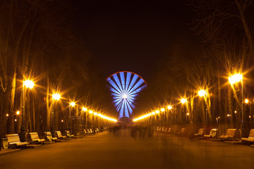 Evening walk in the park and Ferris wheel
