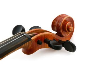 Geige Schnecke