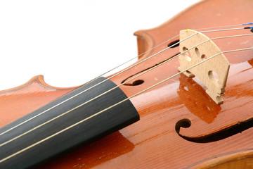 Geige Nahaufnahme