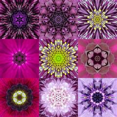 Collection of Nine Purple Concentric Flower Mandala Kaleidoscope