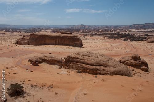 Fotobehang Midden Oosten Rock formations in Madaîn Saleh, Saudi Arabia