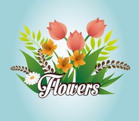 Flowers design.