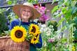 Leinwandbild Motiv Happy Old Woman with Baskets of Fresh Sunflowers.