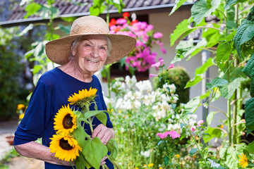Smiling Old Woman Holding Sunflowers at the Garden.