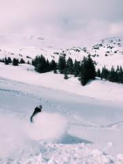 snowboarding in colorado back country