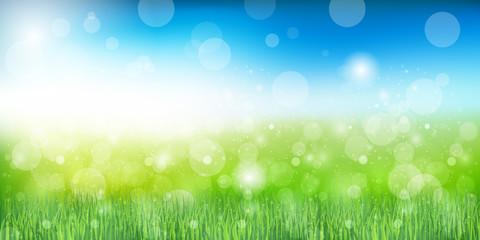 草 新緑 背景