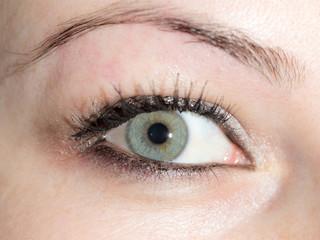 girl eye. close-up