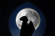 Card design silhouette of muslimah pray on blue moon