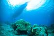 sponge below boat bunaken sulawesi indonesia underwater photo