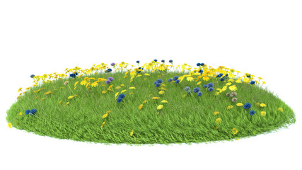 Natural grass arena isolated on white background
