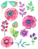 Fototapety Colorful floral collection with leaves and flowers, watercolor i