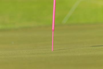 Golf Pink Flag Stick