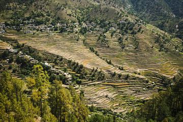 High angle view of small village with terraced field, Uttarkashi