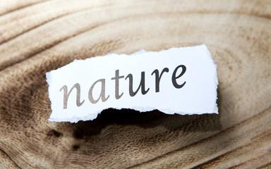 nature sur papier et fond de bois