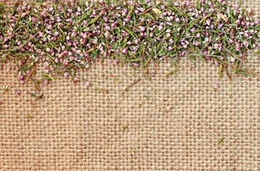 Framed burlap background with dried heather flowers