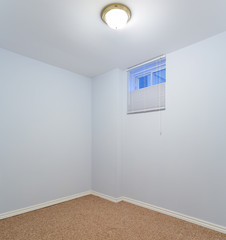 Empty basement bedroom with carpet